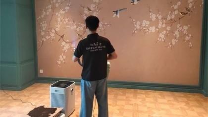 北京市朝阳区longjing酒吧室内除甲醛-娱乐会所除甲醛案例